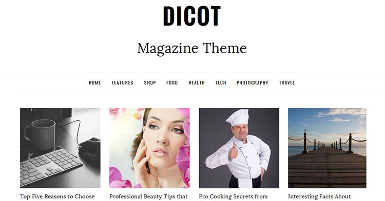 Dicot – Magazine WP Theme