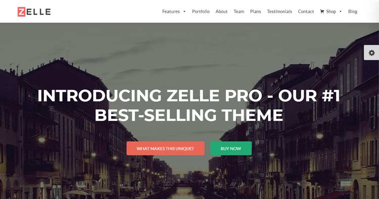 Zelle Pro WordPress Theme Download