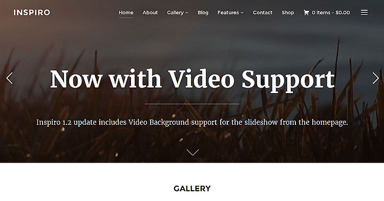 Inspiro Photography WP Theme