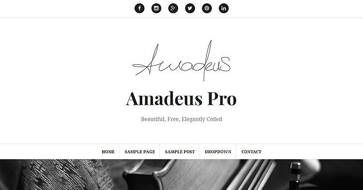 Amadeus Pro Bloggers WP Theme