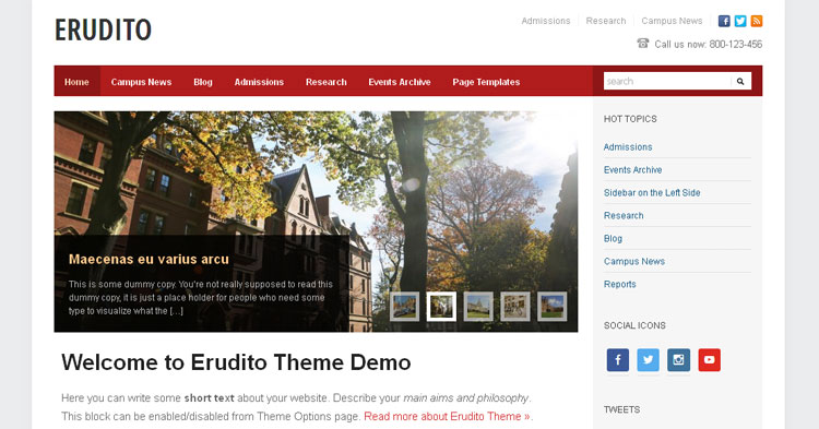 Download Erudito Education WP Theme Now!