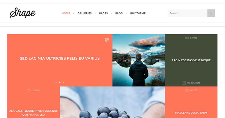 Shape Photography WordPress Theme