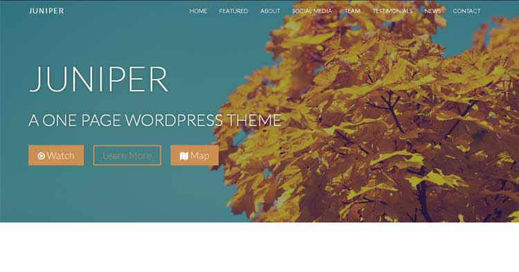 Juniper One Page WordPress Theme