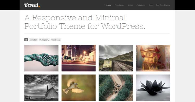 Reveal WordPress Portfolio Theme