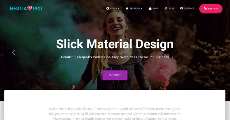 Hestia Pro One Page WordPress Theme