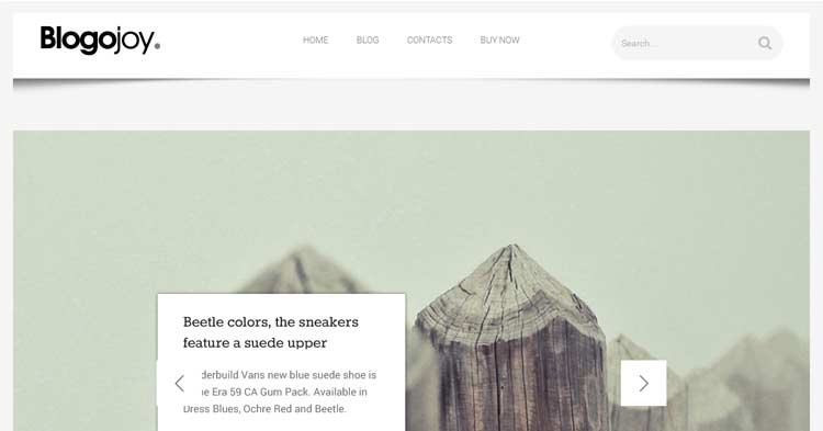 Download Blogojoy – Minimalist Blog WP Theme now!