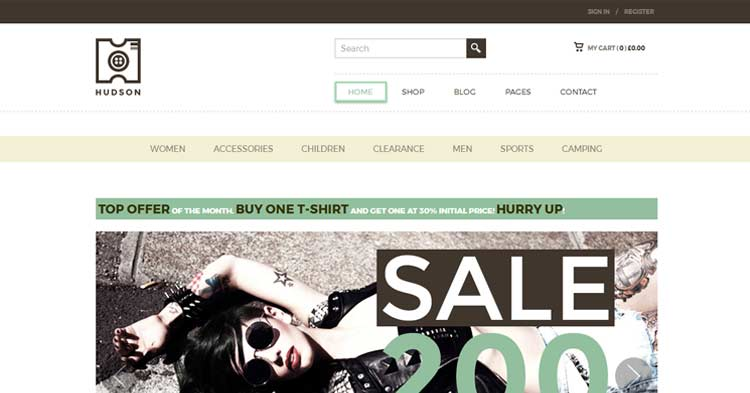 Download Hudson eCommerce WordPress Theme Now!
