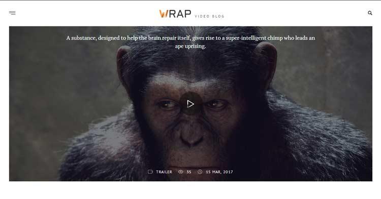 Download Wrap Video Blog WordPress Theme now!