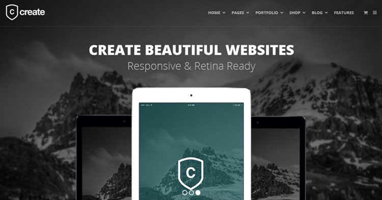 Download Create Versatile WordPress Theme Now!