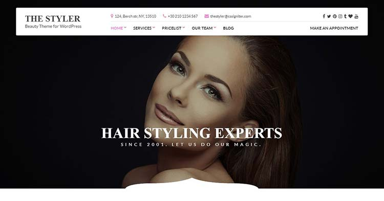 Download The Styler Beauty Health WP Theme Now!