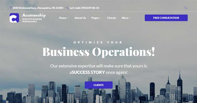 Download Acumenship Consulting Agency WP Theme now!