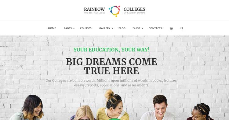 Rainbow Colleges E-Course WordPress Theme