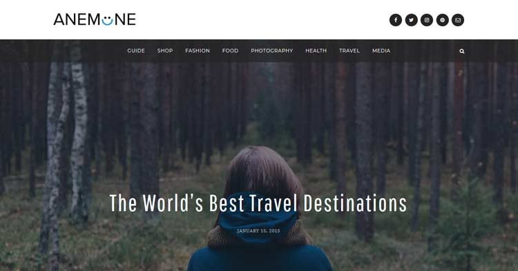 Download Anemone Blog Magazine WordPress Theme Now!