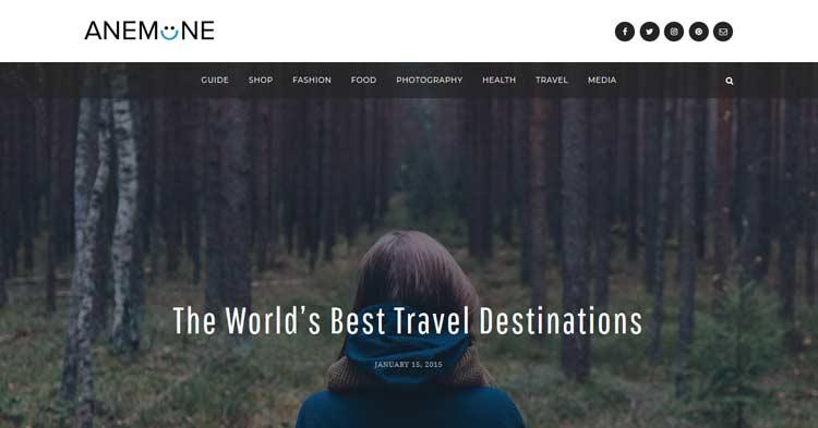 Download Anemone Blog Magazine WordPress Theme now!