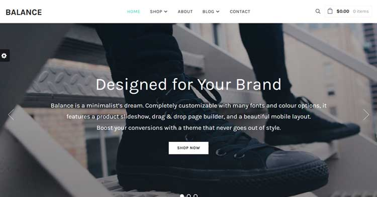 Download Balance Minimal eCommerce WP Theme Now!