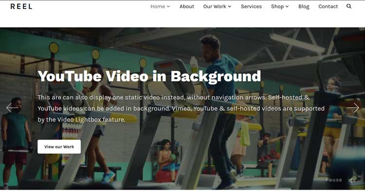 Reel Video Portfolio WordPress Theme