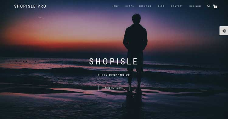 ShopIsle Pro Theme for eCommerce