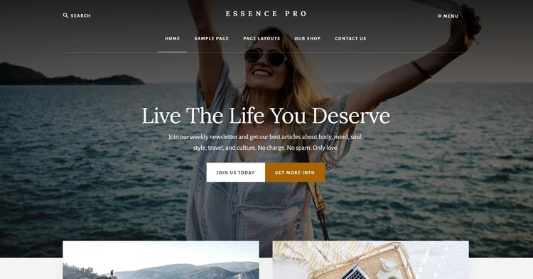 Download Essence Pro WordPress Theme Now!