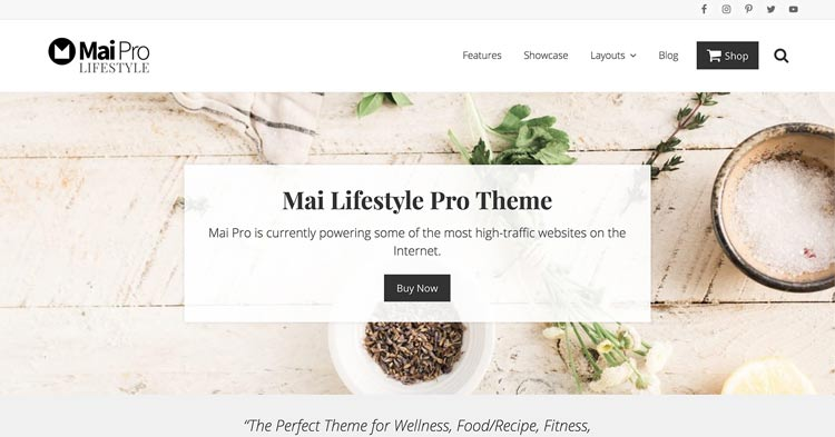 Download Mai Lifestyle Pro WordPress Theme now!