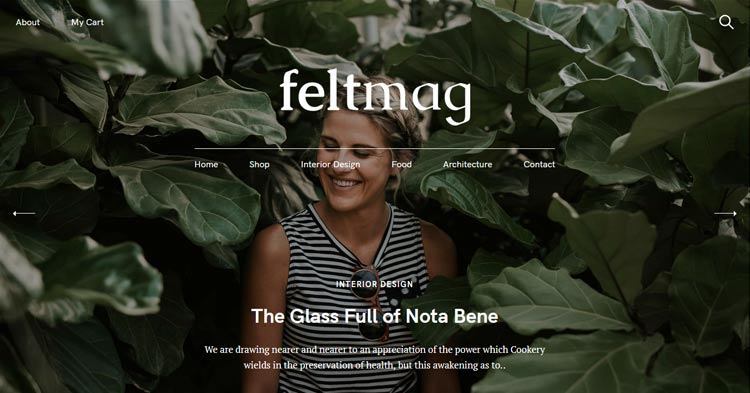 Download Feltmag Blog Magazine WordPress Theme now!